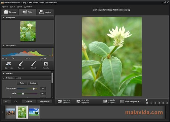 AVS Photo Editor App Latest Version for PC Windows 10