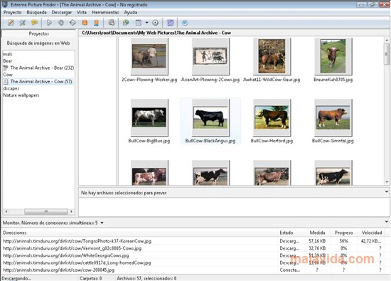 Extreme Picture Finder App Latest Version for PC Windows 10