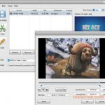 Your Free Video Converter